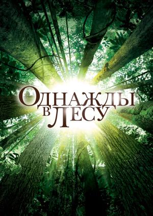 Однажды в лесу